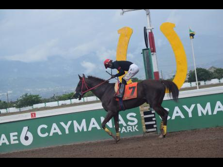 Sentient, ridden by Robert Halledeen, wins the seventh race, over six and a half furlongs at Caymanas Park in St Catherine on Saturday, August 14.
