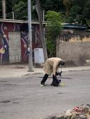 A crime scene detective examines a bag after a shooting incident, which claimed the life of Junior Bryce, in front of The University Hospital of the West Indies in St Andrew yesterday morning.